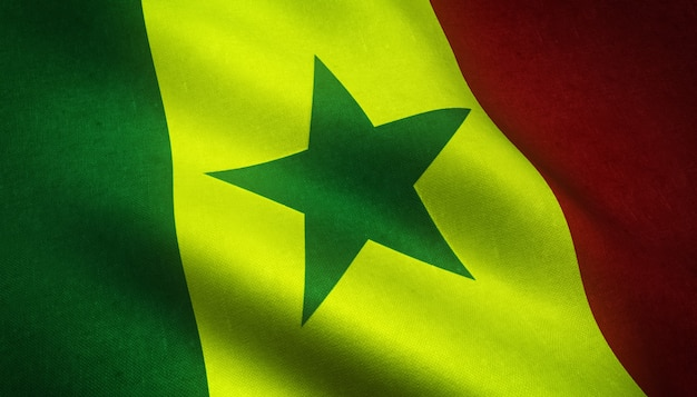 Ondeando la bandera de senegal