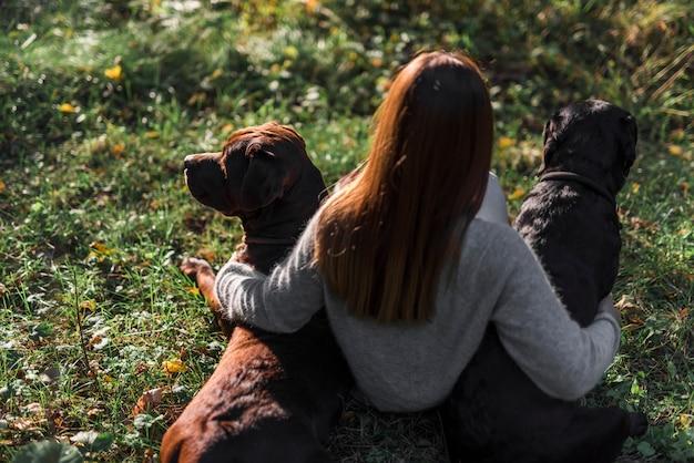 Opinión de alto ángulo del dueño femenino que se sienta con sus dos perros en hierba en el parque