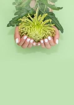 Opinión del primer la mujer con la flor en fondo verde. tratamiento de spa