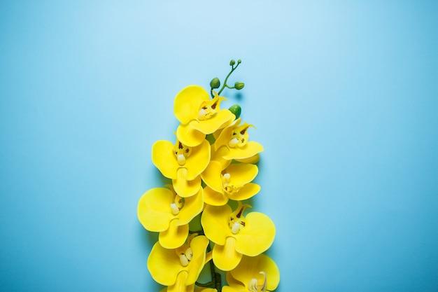 Orquídeas amarillas en el centro. tarjeta de san valentín sobre fondo azul.