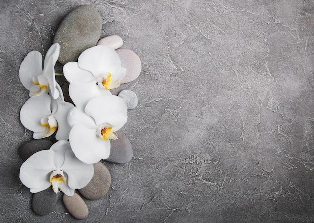 Orquídeas blancas y piedras de masaje.