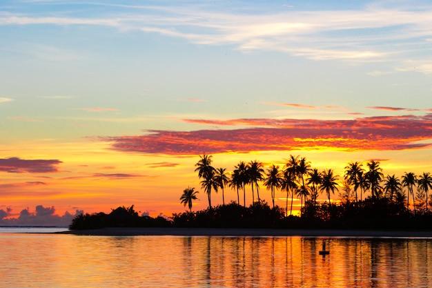 Oscuras siluetas de palmeras y un increíble cielo nublado al atardecer en una isla tropical en el océano índico