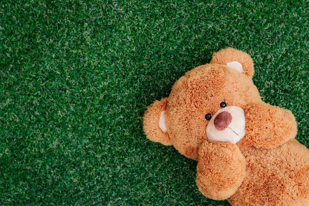 El oso de peluche dormía sobre la hierba cara feliz