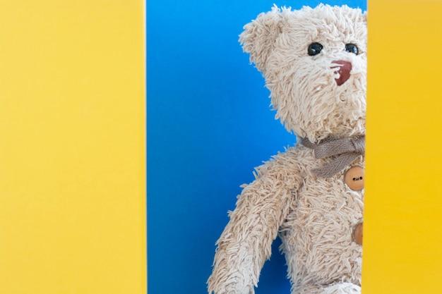 Oso de peluche juega a las escondidas con cartón, muñeca linda, juguetona y feliz.