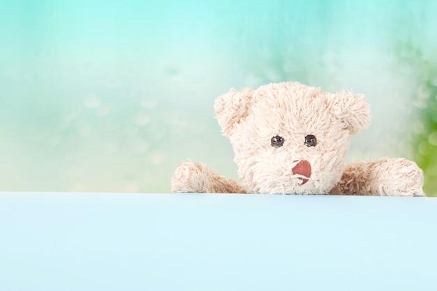 Oso de peluche juguetón con tablero azul y fondo en colores pastel