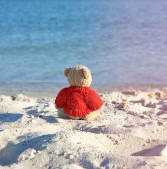 Oso de peluche marrón con un suéter rojo sentado en la orilla arenosa y mira a lo lejos