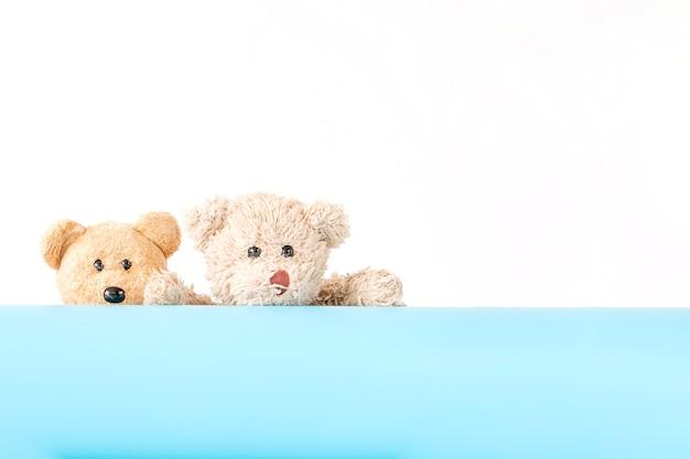 Oso de peluche pareja juguetón con tablero azul