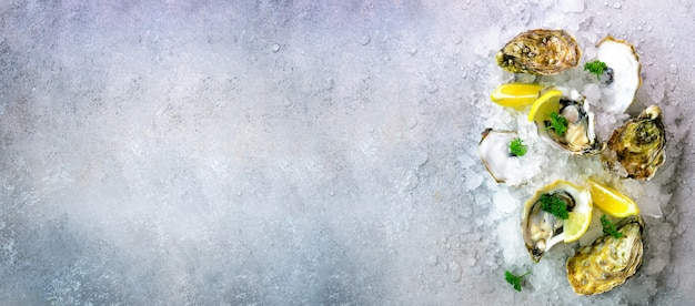 Ostras frescas abiertas, limón, hierbas, hielo en piedra gris concreto.