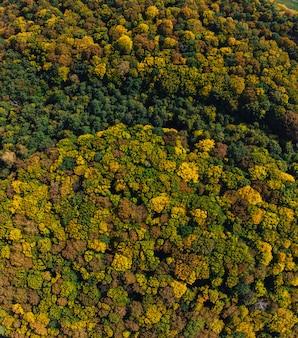 Otoño campo aéreo drone campo y bosque