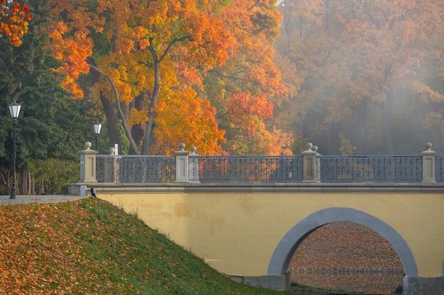 Otoño dorado cerca del castillo de niasvizh, bielorrusia