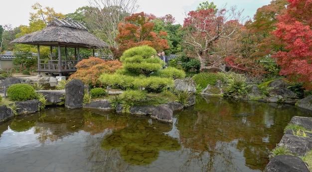 Otoño en japón buscando hojas rojas de arce kioto