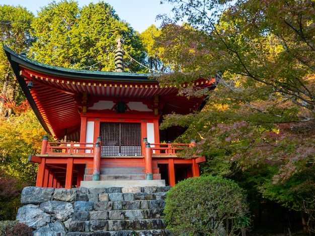 Otoño japonés otoño. templo de kyoto daigoji.