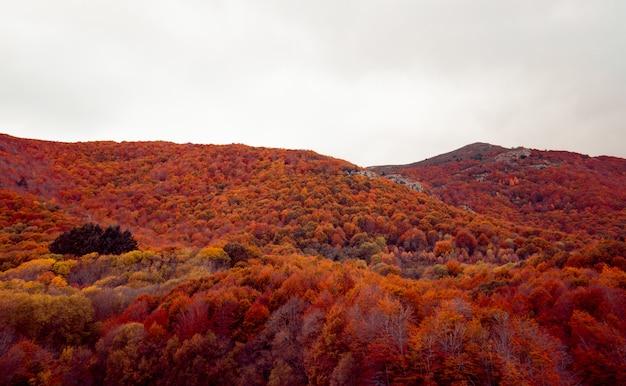 Otoño montaña paisaje rojo y naranja