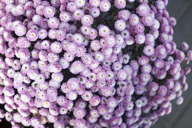 Otoño o caída de fondo floral. vista superior.