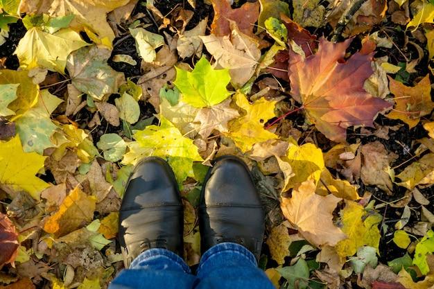 Otoño, otoño, hojas, piernas y zapatos. imagen conceptual de piernas con botas en las hojas de otoño. zapatos de pies caminando en la naturaleza