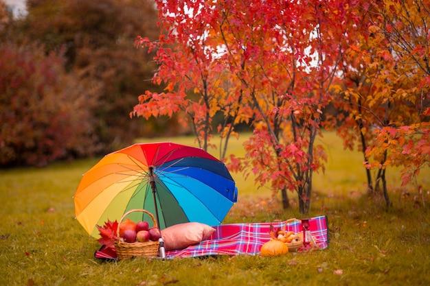 Otoño otoño picnic sobre el césped, relajarse en el parque con hojas rojas caídas espacio de copia
