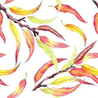 Otoño ramas de los árboles con hojas amarillas y rojas. patrón sin costuras acuarela