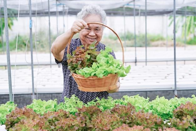 Paciente asiático de la mujer mayor que sostiene la ensalada de verduras en la granja.