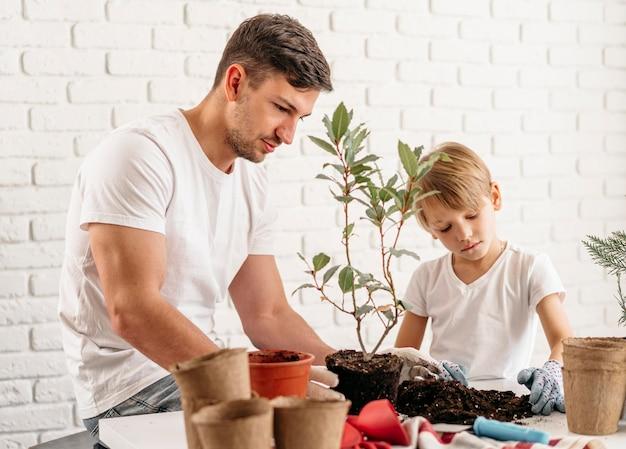 Padre e hijo plantando plantas en casa.