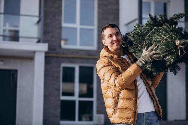 Padre llevando árbol de navidad a casa