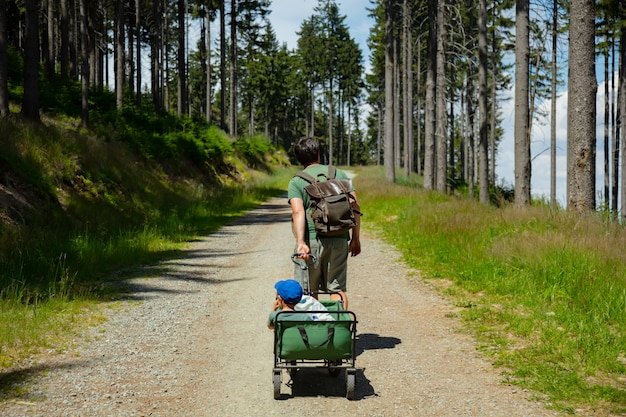 Padre con un niño en la carriola está caminando por un camino forestal