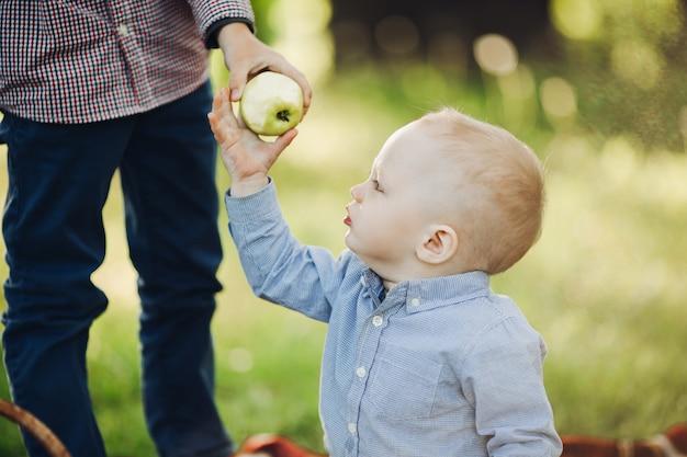 Padres dando por niño manzana, caminando juntos en el parque de verano
