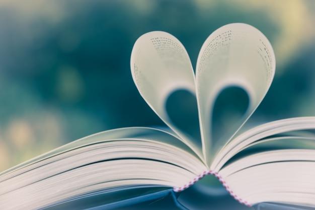 Página del libro del corazón - imágenes del estilo del efecto del vintage