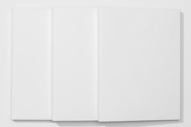 Páginas planas laicos del libro de espacio de copia