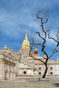 Pagoda myanma pagana