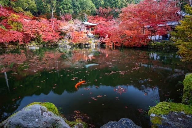 La pagoda roja y el puente rojo con el estanque y el color cambian los árboles de arce en el templo daigoji en la temporada de otoño en noviembre en kyoto, japón.