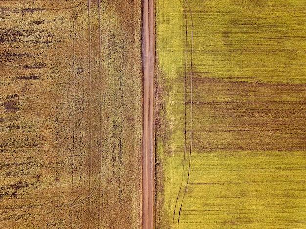 Paisaje agrícola desde el aire. camino de tierra estrecho recto entre campos verdes y marrones soleados.