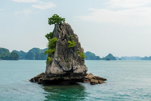 Paisaje de la bahía de piedra caliza de halong