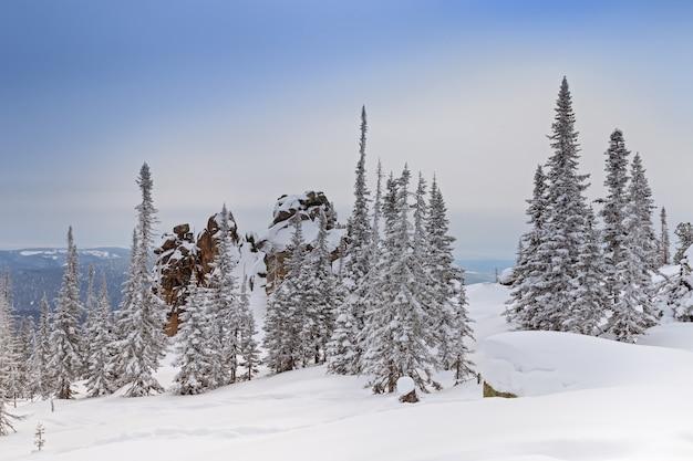 Paisaje de bosque de invierno con árboles cubiertos de nieve en las montañas de altay, monte utuya.