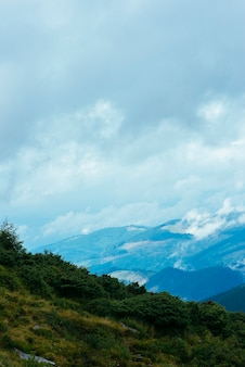 Paisaje de bosque de montaña con cielo nublado