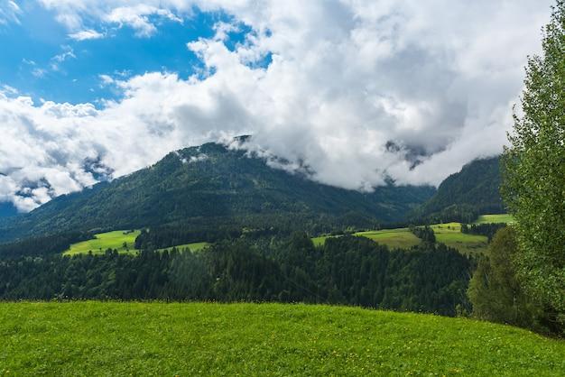 Paisaje de bosque verde de las montañas de los alpes