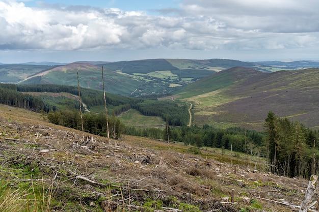Paisaje del camino de wicklow con bosque cortado.