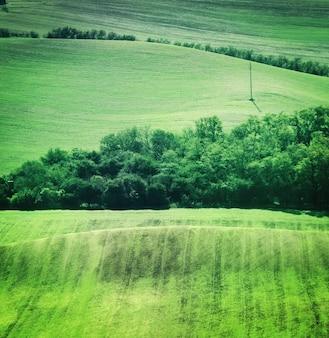 Paisaje de campo de campos verdes