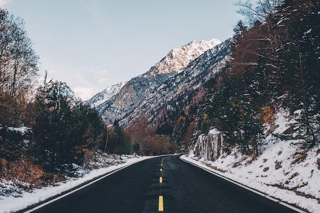 Paisaje de carretera de invierno con coloridos árboles y montañas nevadas en el fondo en un día soleado
