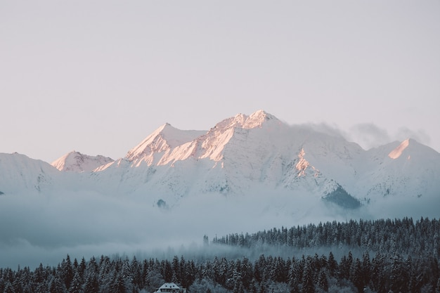 Paisaje de colinas y bosques cubiertos de nieve bajo la luz del sol y un cielo nublado