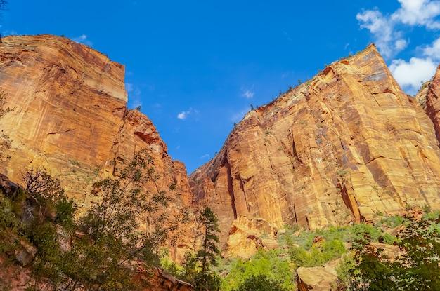 Paisaje colorido del parque nacional de zion en utah