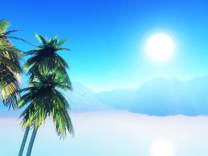 Paisaje de verano 3d con palmeras