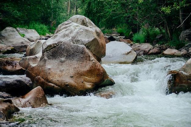 Paisaje escénico con hermoso arroyo de montaña con agua verde entre exuberantes matorrales en el bosque