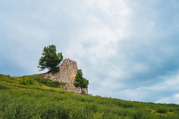 Paisaje con gran piedra rocosa en la colina en las tierras altas bajo cielo nublado