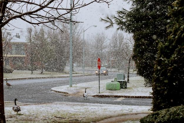 Paisaje invernal en la ciudad.