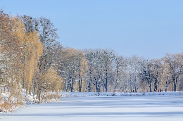 Paisaje invernal con lago