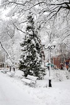 Paisaje de invierno con árboles y nieve en el parque de la ciudad. los árboles son cov