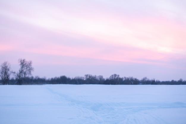 Paisaje de invierno campo cubierto de nieve y árboles calvos.