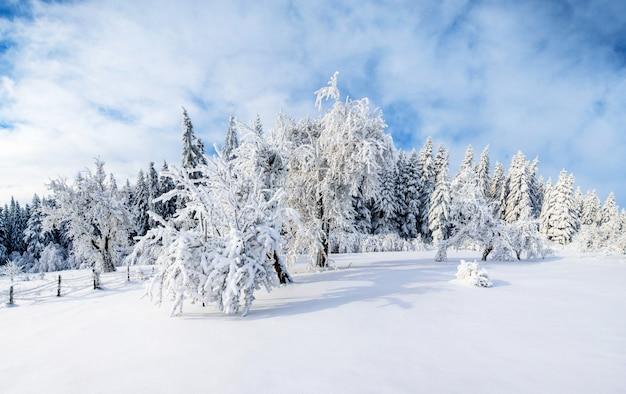 Paisaje de invierno en las montañas