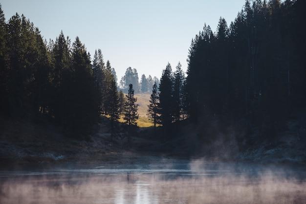 Paisaje de un lago helado rodeado por un bosque.
