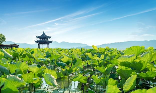 Paisaje del lago del oeste de china hangzhou